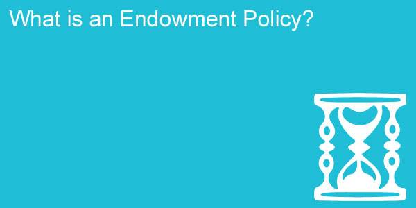 what is an endowment policy