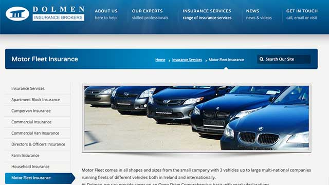 dolmen fleet insurance