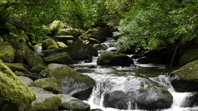 best things to do in offaly